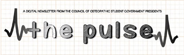 The-Pulse-header-600px